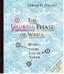 4th phase of water book